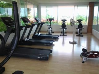 Fuly Equipped Gym (free to guests)