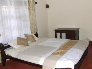 On Kilimanjaro! Bed & Breakfast Rooms for rent
