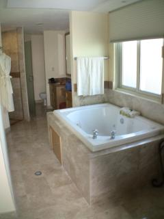 Master Suite Jacuzzi Tub and Vanities