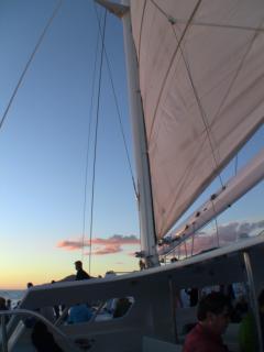 Tropicat Sunset Cruise