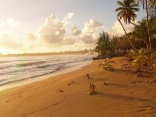 When we say Beachfront we mean on the beach!, Luquillo