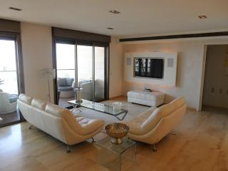 Amazing apt in Ramat Aviv HaHadasha, Fully Furnished, Balcony Sea View