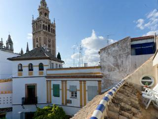 [302] Exclusive loft with views on the Giralda, Seville