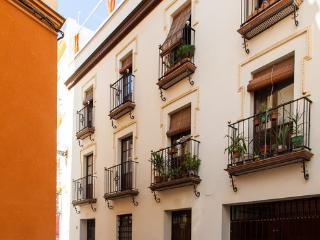 [566] Beautiful studio apartment with huge terrace