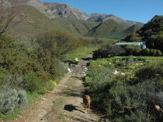 Dew Cottage, Mountain Farm Retreat, Montagu