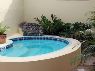 Enjoy the shared jacuzzi in our back patio al fresco!