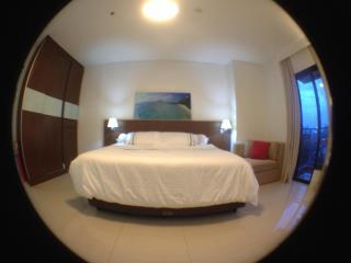 Spacious living room with 3 doors wardrobe, kingsize bedrrom & coach