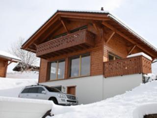 Nendaz Ski Chalet With Views!