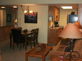 Ski In / Ski Out 2 Bedroom Steamboat Condo