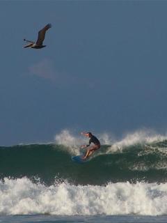 Pachamama surf