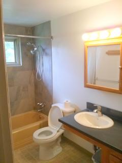 4 Bedroom South Boulder Home - Sunny bathroom with dual adjustable showerheads