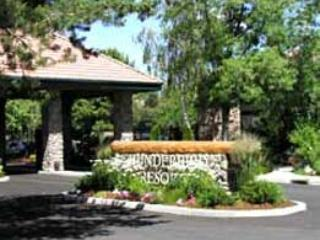 Thunderbird Resort Club! 1 bdrm slps 4 Condo Aug.14-28, Only $249/entire week!