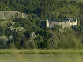 Chateau 10BD Groups Welcome French Alps Summer