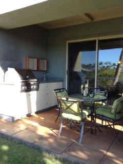 View of the gas BBQ and cabinets with built-in sink