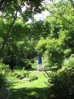 Perennial back garden