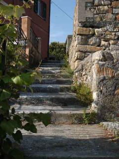 small paths and stairs connect all the differen hamlets of Framura overlooking the sea