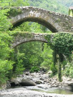 Bridge over Lake Molini