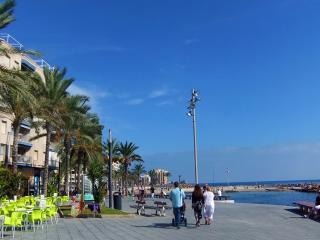 Torrevieja Town Seaside Holiday Apartment Let (building on sea front promenade)