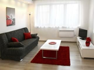 Cozy living room for relaxing and watching TV; sofa also folds out for sleeping