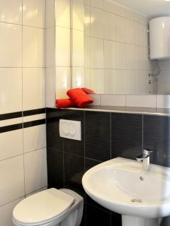 Spotlessly clean and well-lit bathroom