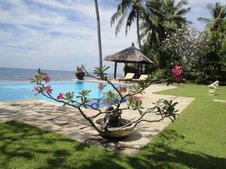 Villa OnzeBunga beachfront with pool north Bali