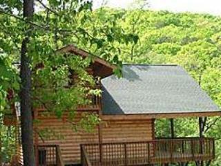 Enchanted Forest: Hilltop Hideaway Cabin, Eureka Springs