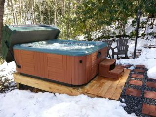 NEW - 6 person Hot Springs Spa!