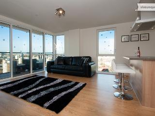 Panoramic Tower, 2 bed 2 bath, gym and views, Canary Wharf, London