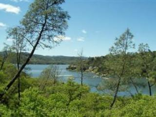 Cois Dara-Shore Of Oak!-Lake Front with huge deck, Lake Nacimiento
