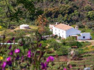 Lovely authentic Andaluz farmhouse in NaturalPark, Riogordo