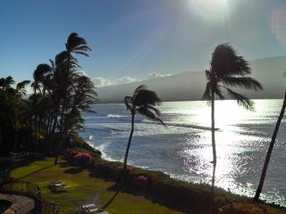 Maui Direct Ocean Front Condo - Luxury View