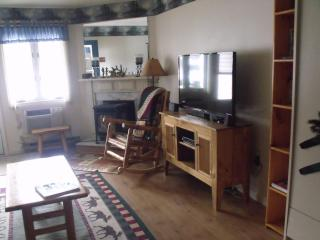 Spacious 1 bdr Condo close to Loon Mountain, Lincoln