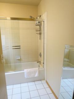 Shower/tub in master bathroom