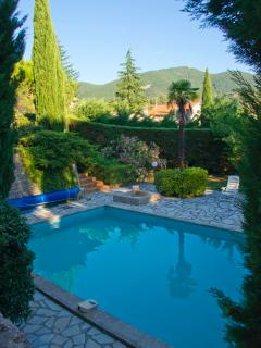 view from the terrace under the pine trees on the private heated pool