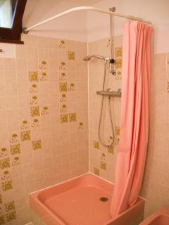 second bathroom with shower, sink and WC