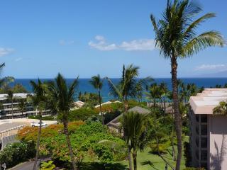 Updated 180 View Condo at Maui's Best Beaches, Kihei