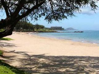 Kamaole II Beach is right in front of the complex