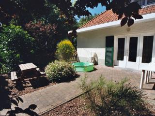 Dahlia: private garden