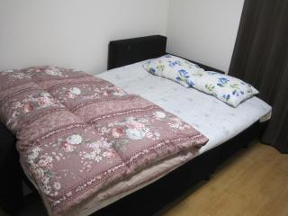 double sofa chair/bed room1