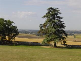 The park and view from the bedrooms
