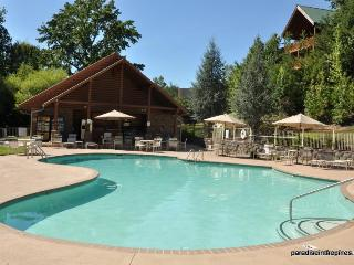 Paradise in the Pines - JULY SPECIALS!-1 Mile Off Pkwy; 3 King Suites; Jacuzzis