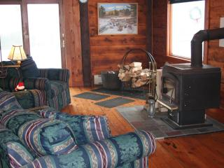 Living Room with Glass Front Wood Stove