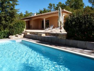 Luxury Villa Vineyard, Besse sur Issole, Provence