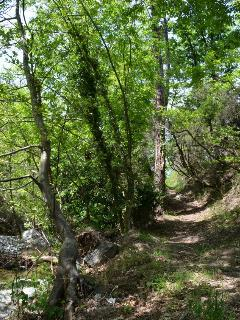 This eare is also full of beuatiful paths for hikers and mountainbikers