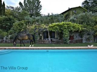 Villa 4809, Ficulle