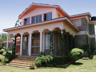Ambassadorial Style House in Kenya, Nairobi