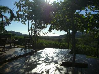 Almond Grove near pool