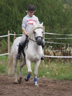 We can arrange horse/pony riding. Beginners also.