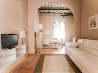 Apt with terrace in the heart of town, Lucca