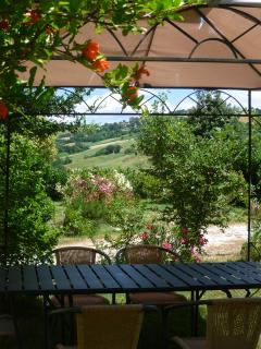 Looking out from the pergola at the front of the house